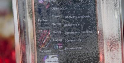 _MG_8305
